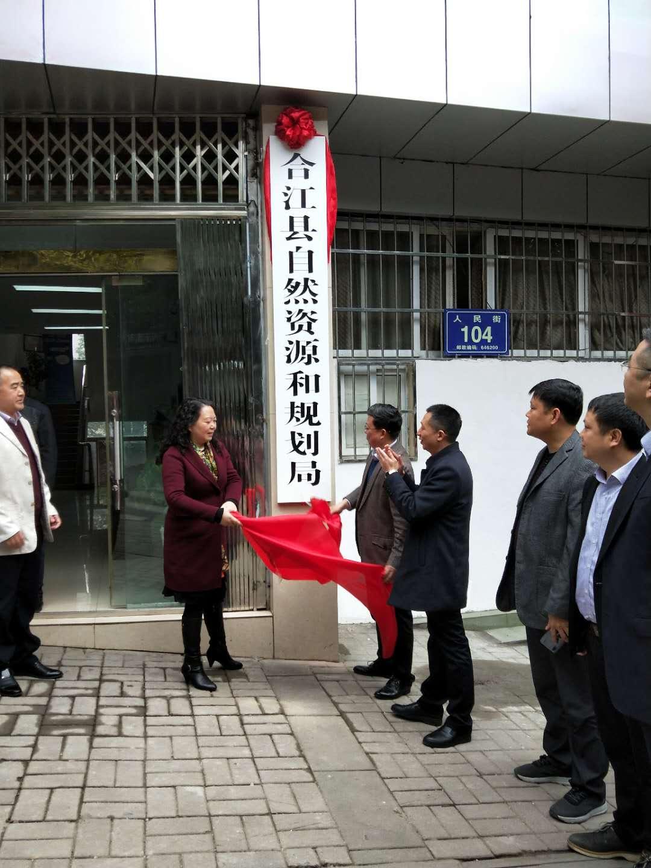 合江县自然资源和规划